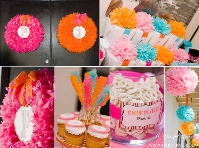 1st Birthday Party Ideas by A Blissful Nest