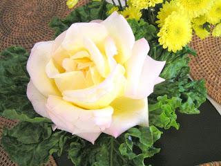 Nothing Like Spring Roses!