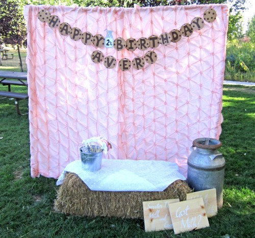 Diy Home Decorating Interior Design Idea: DIY Outdoor Photo Booth - Make Your Own!
