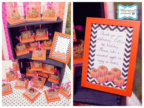 A Blissful Nest Wendy Updegraff Photography Pumpkin County Fair 15 {BN Black Book of Parties} Pumpkin Party County Fair Birthday