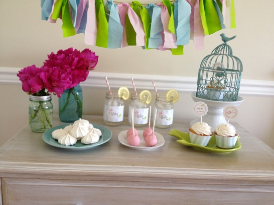 {Giveaway} Celebrate Baby, Sweet Birdie Baby Shower Package