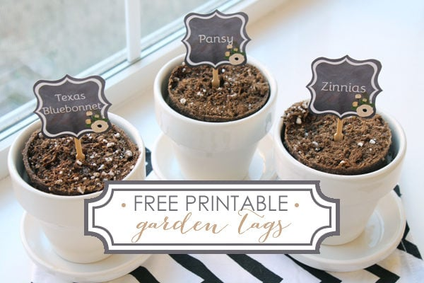 Free Printable Tags For Your Garden