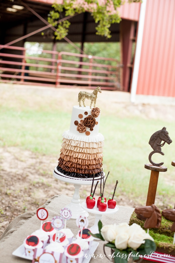 Horse Party by A Blissful Nest 035 Laurens Horse Party   The Dessert Table