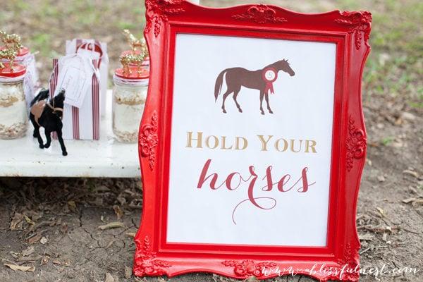 Lauren's Horse Party – Horse Party Favors