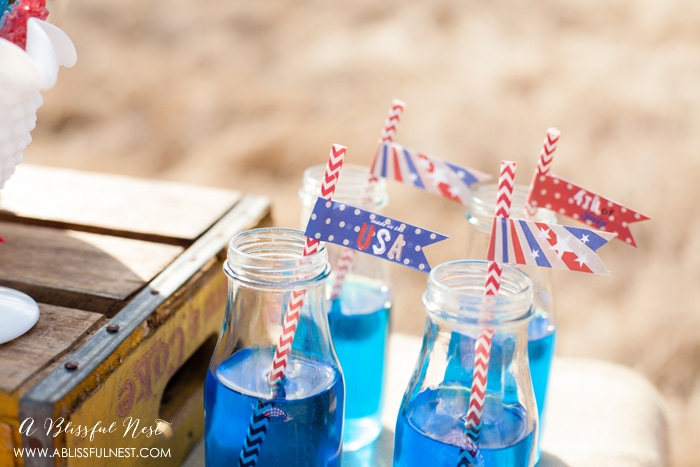 4th of July Party Ideas by A Blissful Nest 008