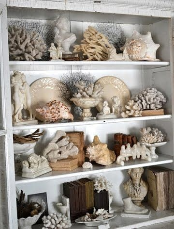 Fill your bookcase with shells for a eclectic beach look
