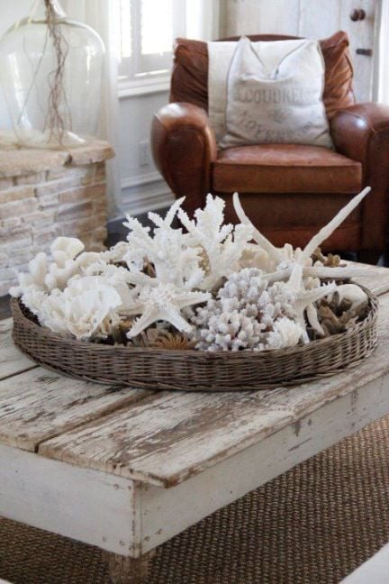 Group shells together in a basket for a whimsical display on your coffee table