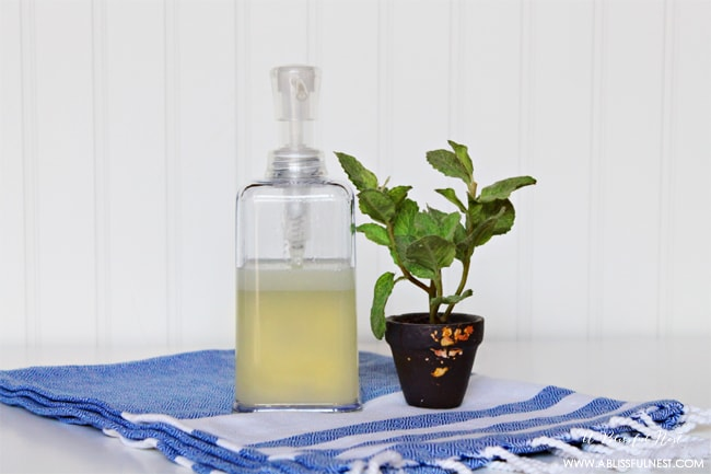 All Natural Homemade Hand Soap