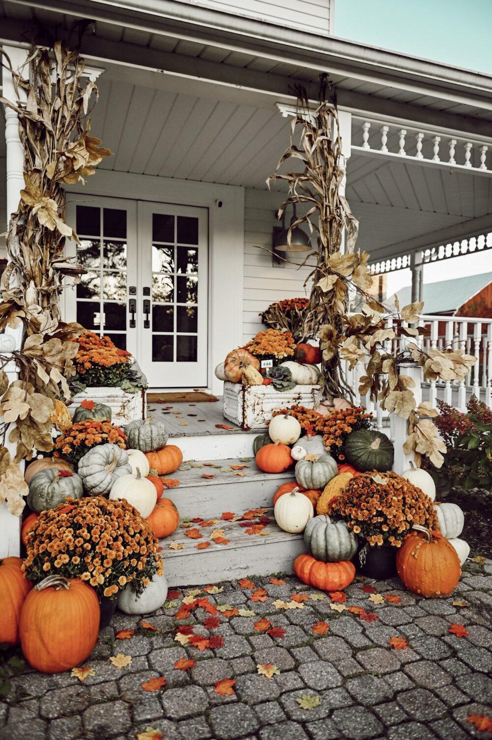 Cornstocks and pumpkins make this a beautiful fall porch to enjoy!