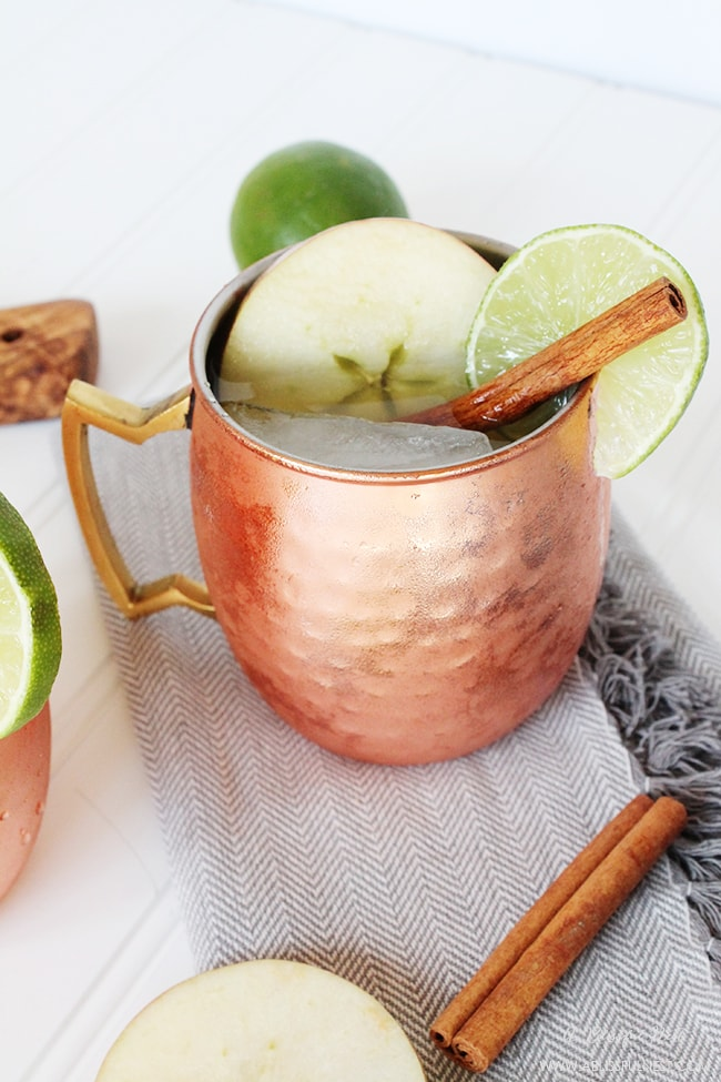Cinnamon Apple Cider Moscow Mule by A Blissful Nest