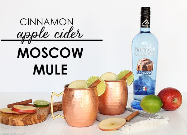 Cinnamon Apple Cider Moscow Mule Recipe