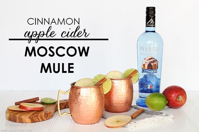 Cinnamon Apple Cider Moscow Mule Recipe