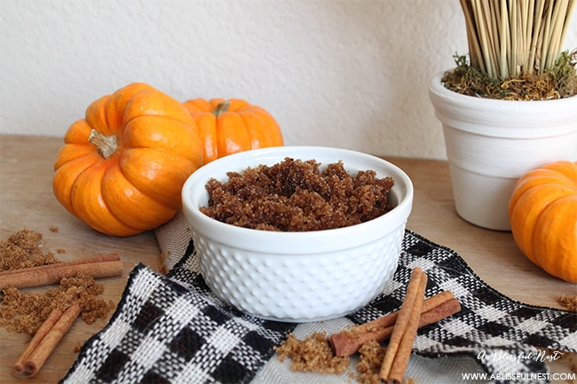 Pumpkin Pie Sugar Scrub Recipe by A Blissful Nest