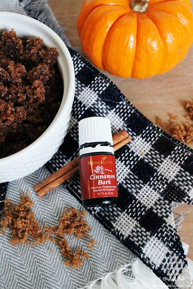 Pumpkin Spice Sugar Scrub Recipe by A Blissful Nest