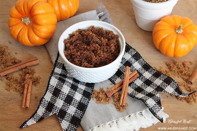 Pumpkin Spice Sugar Scrub by A Blissful Nest