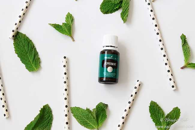 10 things you never thought you could do with peppermint essential oil. One of the most important essential oils to have in the house.