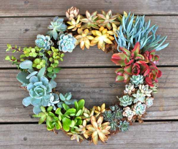 Living Succulent Wreath by Pretty Prudent, 15 Best Spring Wreaths