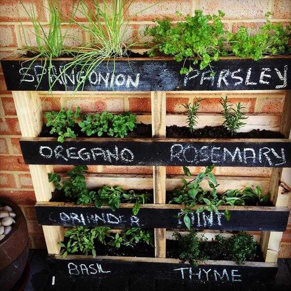 Vertical Herb Garden, 20 Amazing Pallet Projects via A Blissful Nest