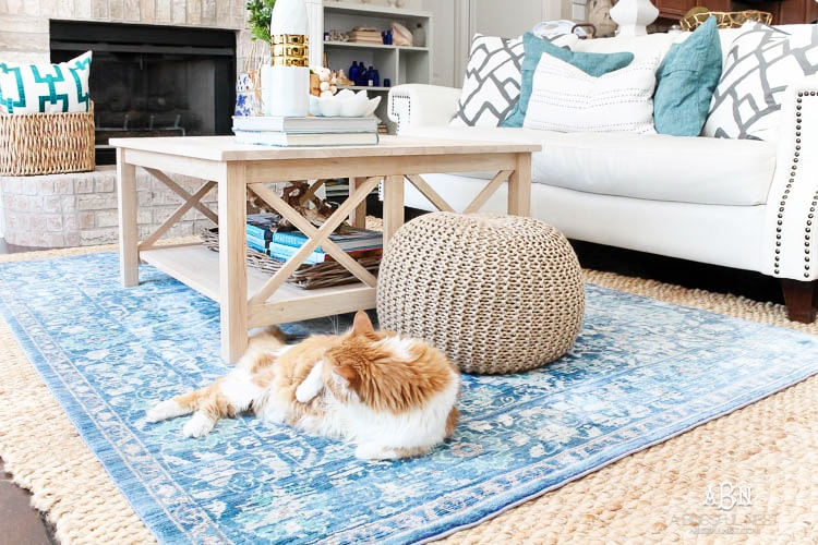 Grab these tips to live blissfully with pets with the amazing products from Skout's Honor. See more on https://ablissfulnest.com/ #ad #skoutshonor #skoutspawpledge