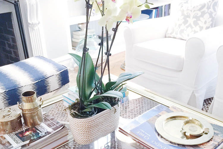Coffee table styling is easy with these 5 tips, find out more at https://ablissfulnest.com #designtips #interiors