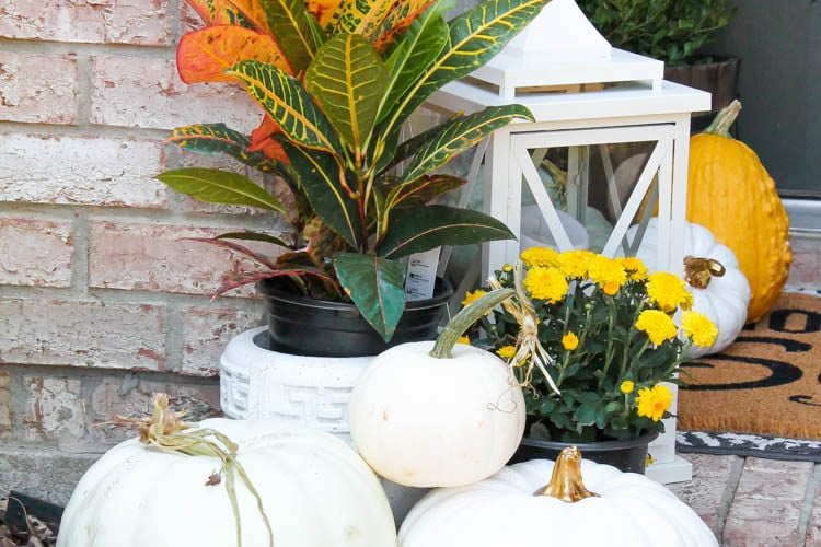Classic colors with a pop of pattern make this gorgeous fall front porch! #fallfrontporch #falldecorideas