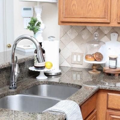 Delta Faucet ShieldSpray Challenge + Blended Bliss