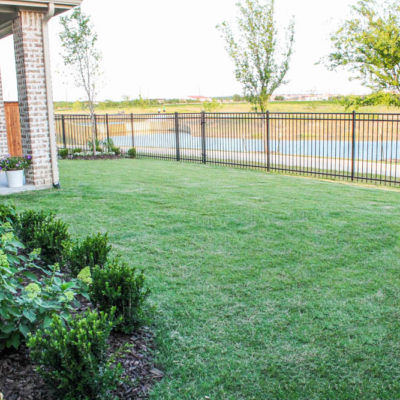 Our Backyard Makeover Before and After with Small Landscaping Ideas