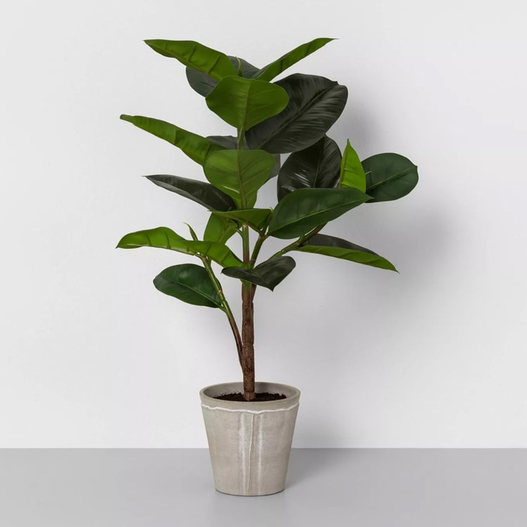 This faux potted plant would be great to spruce things up in your living room. #ABlissfulNest