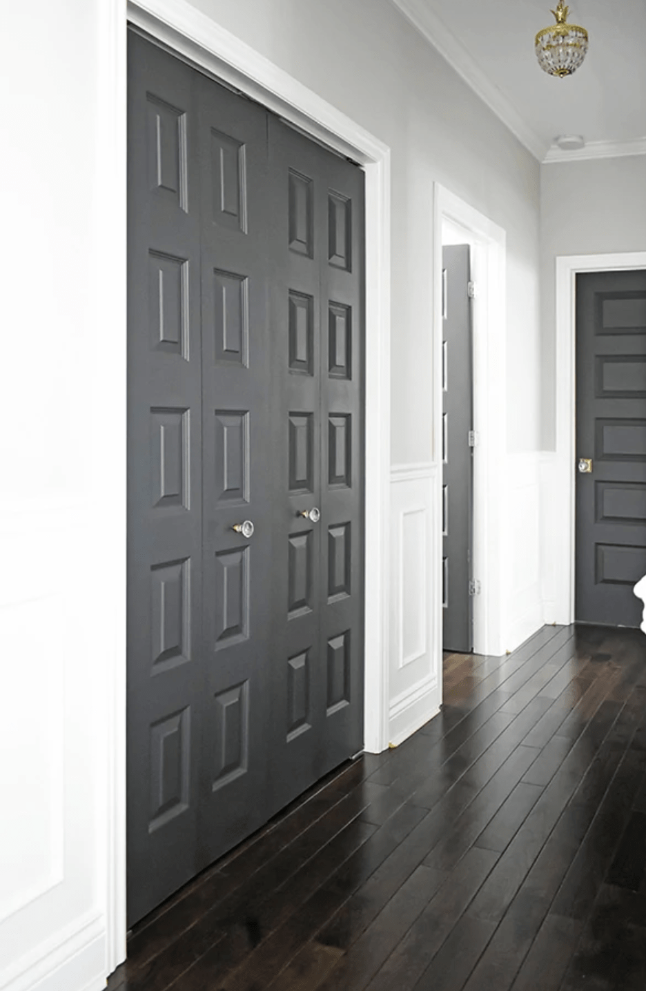 Dark painted doors in a bright hallway