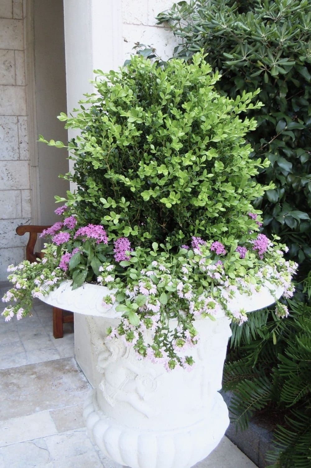 urn containers with boxwood and flowers