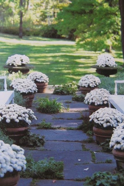 front porch outdoor planter ideas