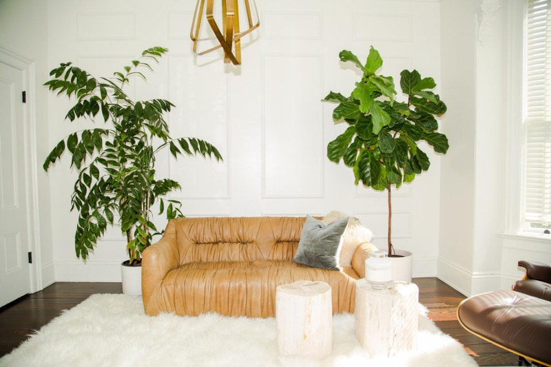 White painted room with furry white rug