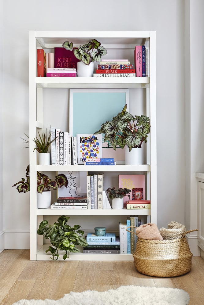 a white bookshelf makes a great accent piece