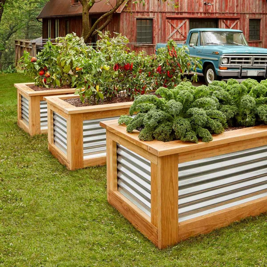corrugated metal and wood raised garden beds