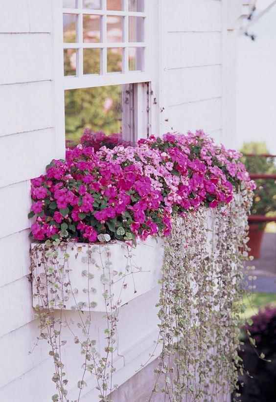 Love this oversized window box planter.
