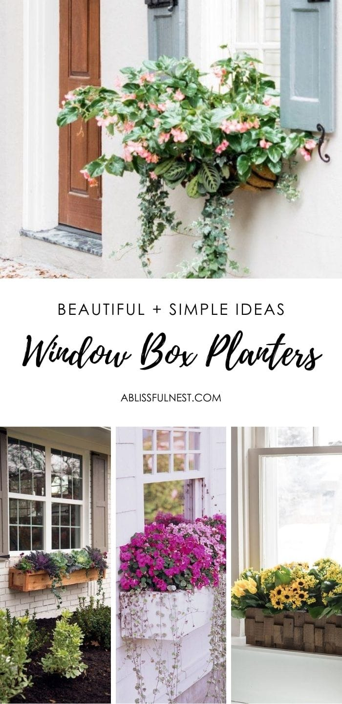 Beautiful and simple ideas to create gorgeous window boxes. #ABlissfulNest #gardening