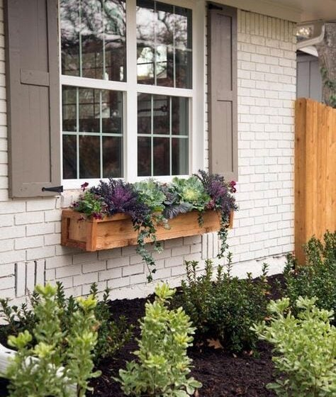Love the rustic window box and mix of plants.