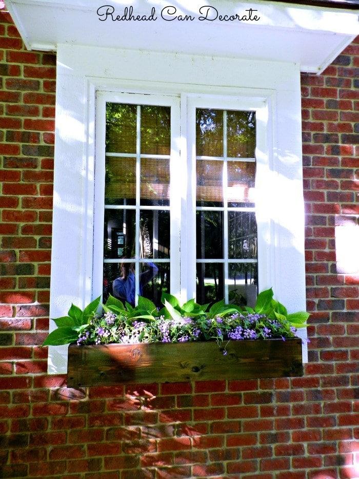 dark mahogany window box brings together the brick house with large white window trim