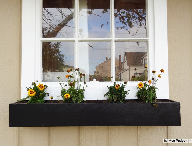 simple black window planter box filled with annuals