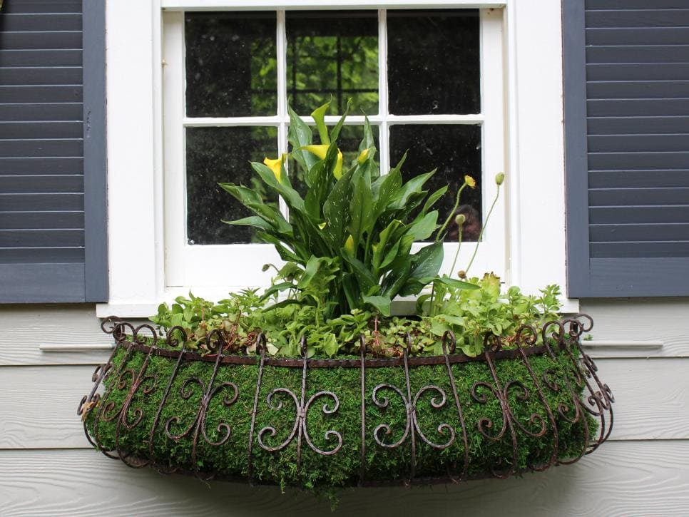 half moon shaped window planter lined with moss and filled with plants
