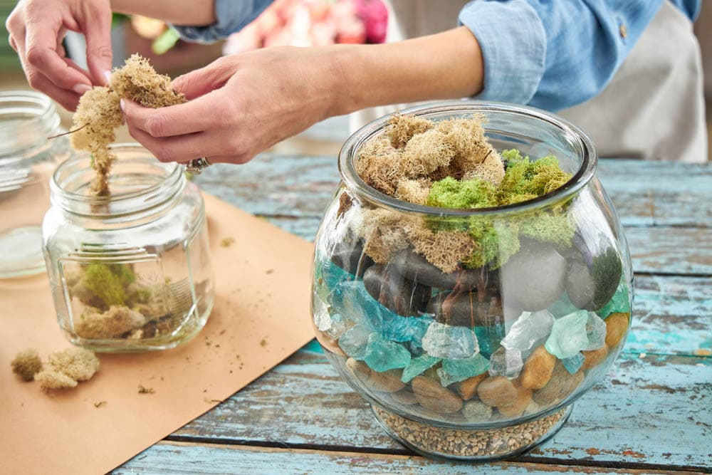 What you need to make a terrarium with supplies from @Michaelsstores . #ABlissfulNest #MakeItWithMichaels #ad #terrarium