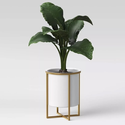 This white iron and gold brass planter is under $50! #ABlissfulNest