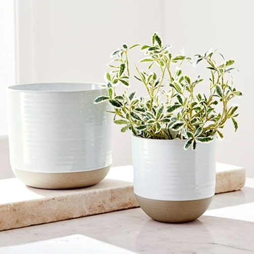 This beige stoneware planter is such a fun find for your indoor or outdoor plants! #ABlissfulNest